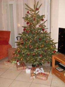 Frohe Weihnachten und ein guten Rutsch und alles gute für das neue Jahr